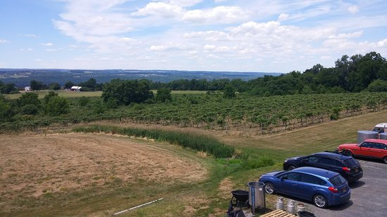 Red Newt Cellars Winery & Bistro: view from deck