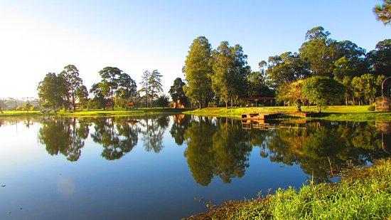 Parque Municipal São José dos Pinhais