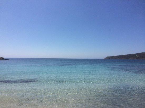 Asinara, Italia: photo1.jpg