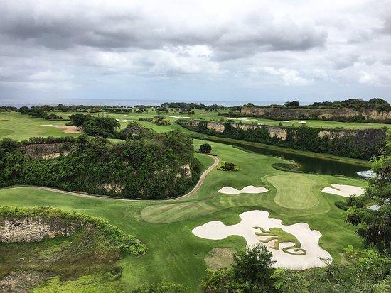 Sandy Lane Hotel: Green monkey golf course