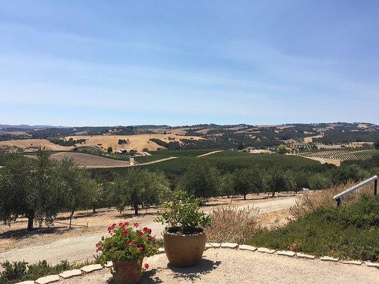 Kiler Ridge Olive Farm: photo0.jpg