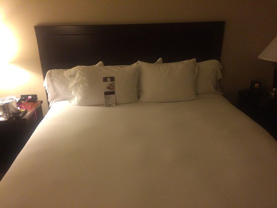 Doubletree Houston Intercontinental Airport: When you're bone dead tired, you need this comfy bed!