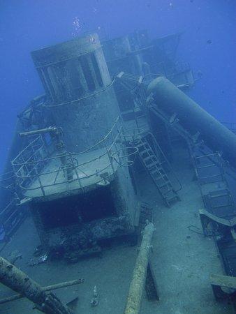 Kittiwake Shipwreck & Artificial Reef: Looking down the Kittiwake