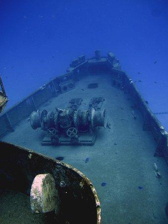 Kittiwake Shipwreck & Artificial Reef: bow of the Kittiwake