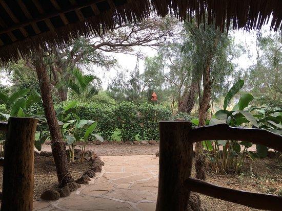 Kibo Safari Camp صورة فوتوغرافية