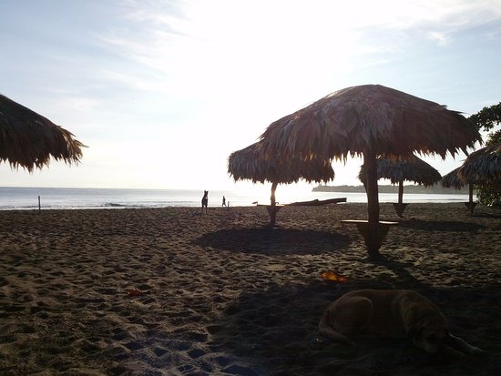 Hotel Banana Azul : Beach cabanas