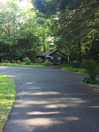 Babbling Brook Cottages: Driveway leading up to cottage #4