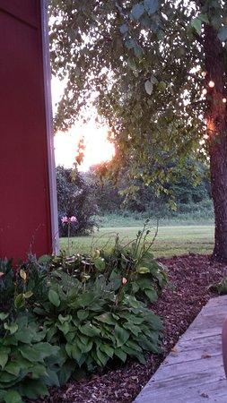Princeton, Kentucky: 20160730_194559_large.jpg