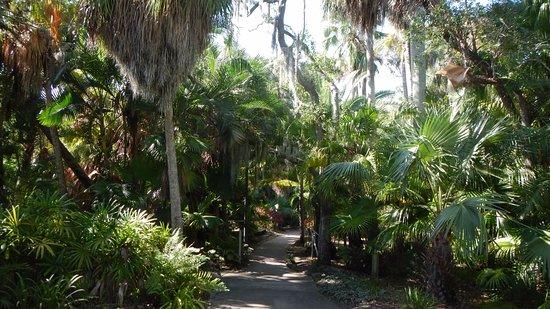 Florida Tech Botanical Garden: Botanická zahrada