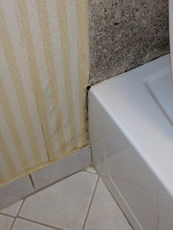 Days Inn Onley: Moldy tub and wet wallpaper