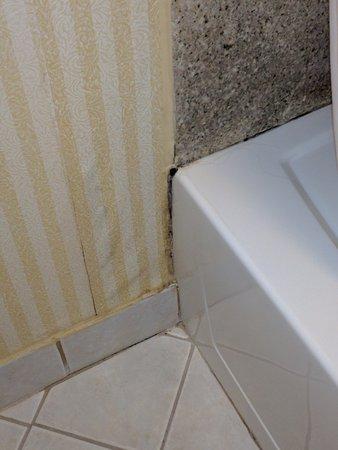 دايز إن أونلي: Moldy tub and wet wallpaper
