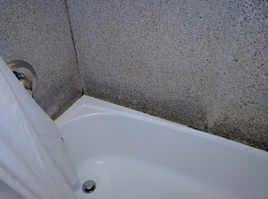 Days Inn Onley: Moldy bath and shower