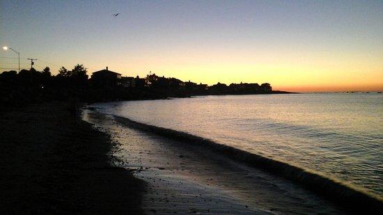 Seascape Inn at Plaice Cove: Beach across the road at 5am