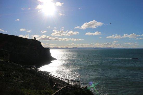 Otago Peninsula: photo1.jpg