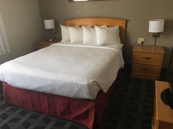TownePlace Suites Albuquerque Airport: Single Queen bedroom