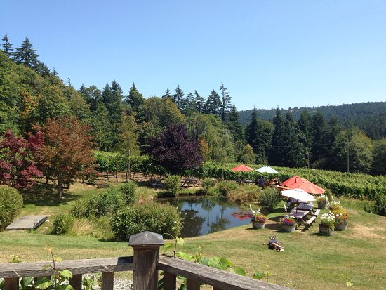 Salt Spring Vineyards