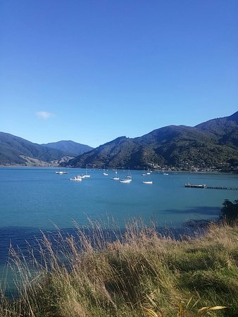 Anakiwa, New Zealand: 20160729_140429_large.jpg