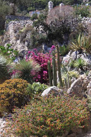 Grotta picture of exotic garden jardin exotique la for Boulevard du jardin exotique monaco
