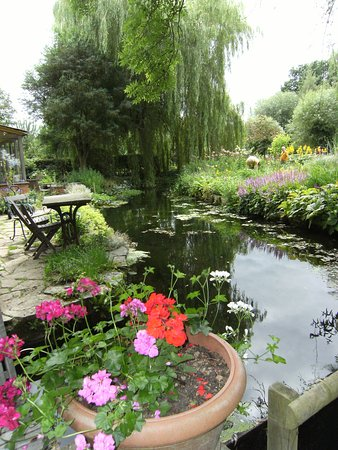 Westonbury Mill Water Gardens: Lovely millpond