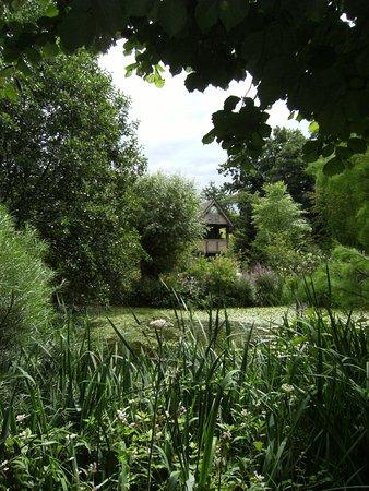 Westonbury Mill Water Gardens: Lovely scene looking across the pond