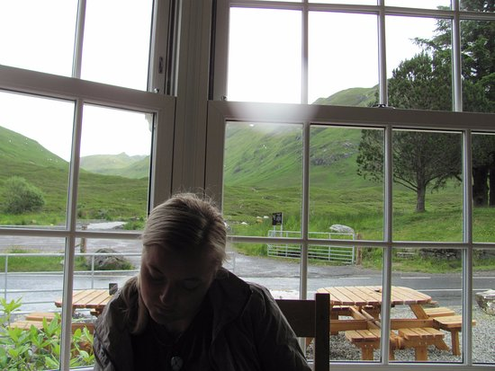 Glenmoriston, UK: View from our table