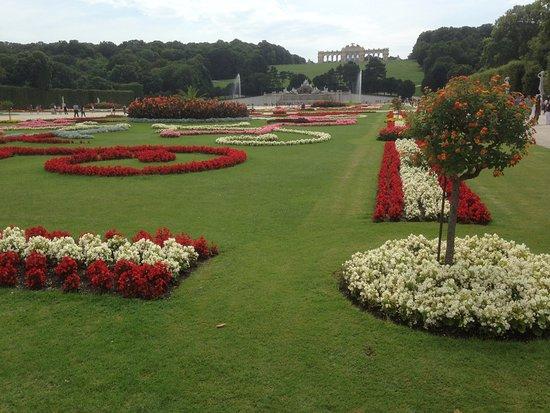 Bloem En Tuin : Bloementuin foto van schonbrunner gardens wenen tripadvisor