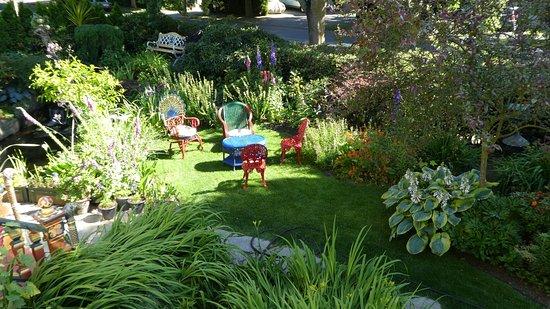 Albion Manor Bed and Breakfast: Albion Manor, Garten