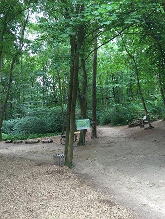 Schweriner Kletterwald