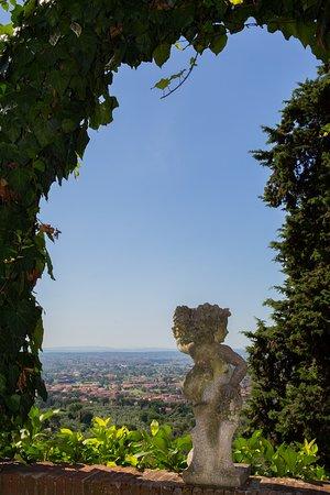 Buggiano Castello, Italien: garden