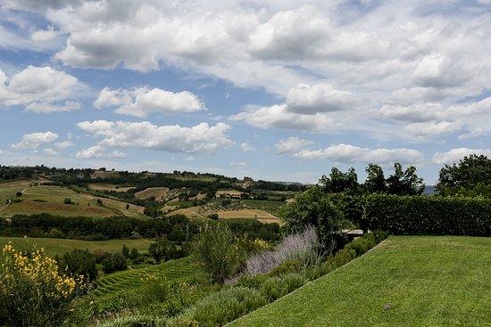 Locanda Palazzone: view