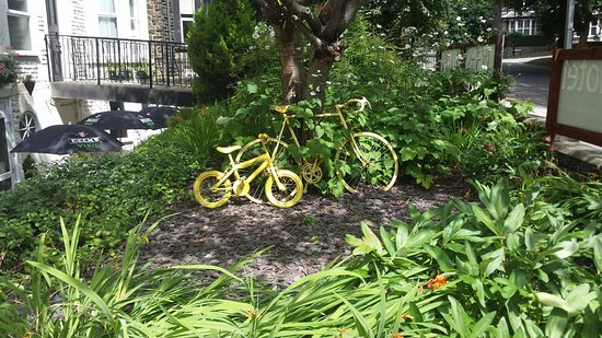 Kimberley Hotel: Yellow bikes. Why?