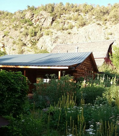 Four Mile Creek Bed and Breakfast: 20160731_030835_large.jpg