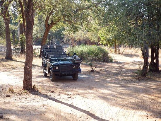 Shiduli Private Game Lodge: Jeep para o Safari