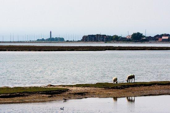 Schleswig-Holstein, Alemania: Leuchtturm grüßt in der Ferne