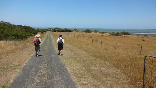 French Island, Australia: Dave and Steve on the Long Point Road, looking towards Phillip Island.