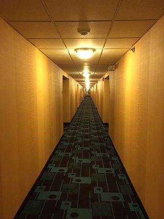 Fairfield Inn & Suites Kansas City Olathe : photo1.jpg
