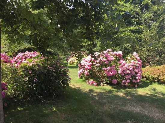 Chatenay-Malabry, Γαλλία: Arboretum de la Vallée-aux-Loups