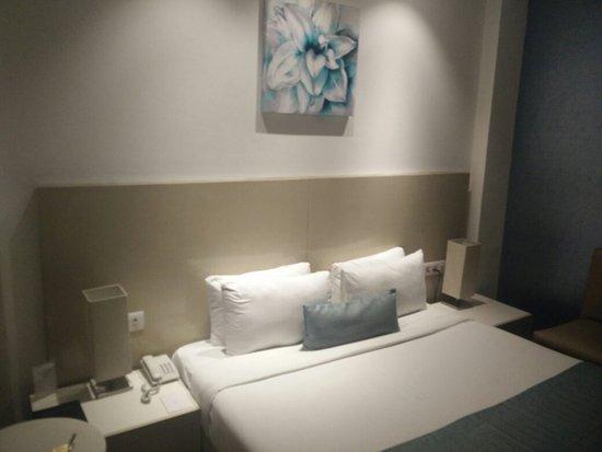 Hotel Shanti Palace (Patel Nagar): IMG_20160731_091124_large.jpg