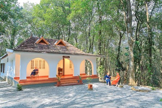 Ponmudi, India: Ayurveda rooms facing the rubber plantation