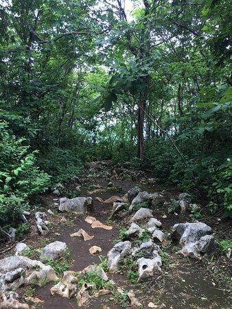 Nicoya, Kosta Rika: photo3.jpg