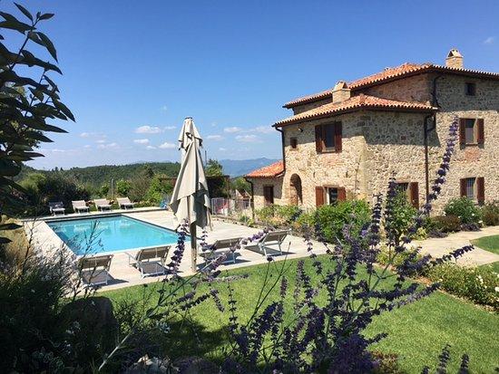 Monte Santa Maria Tiberina, İtalya: Garden and pool
