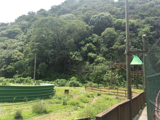 Parque De Juegos Extremos Opiniones De Viajeros Sobre X Park