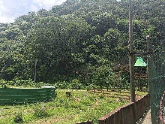 X-Park : photo3.jpg