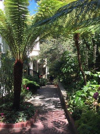 Macondray Lane: I want to live on this street