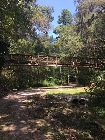 Nice Place For A Easy Hike Picture Of Ravine Gardens State Park Palatka Tripadvisor