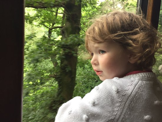 Talyllyn Railway : Chloe loved riding the train. She couldn't stop looking out at the beautiful scenery.