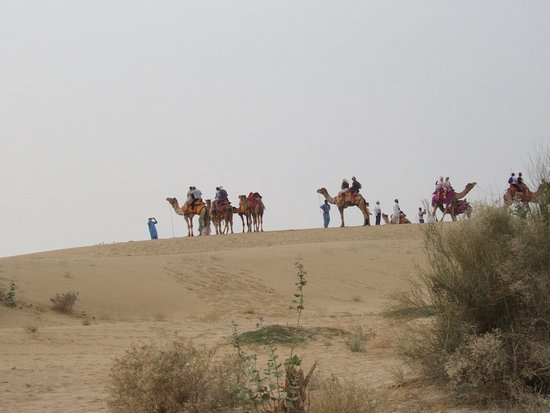 Rajasthan Desert Safari Camp Pvt. Ltd.: View of camels and riders from other properties