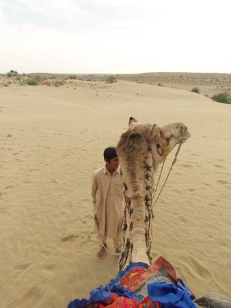 Rajasthan Desert Safari Camp Pvt. Ltd.: My view from the camel's back