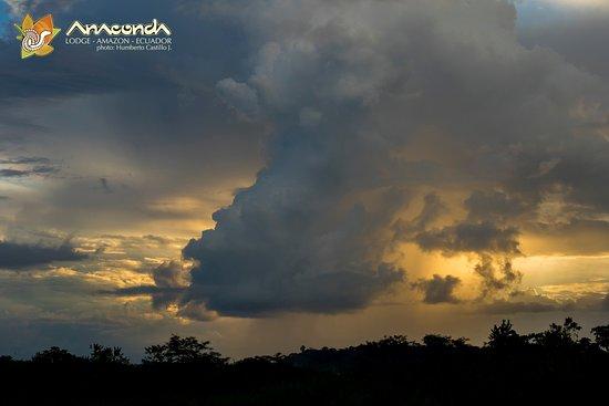 Anaconda Lodge Ecuador Amazonia: Clouds in the Amazon