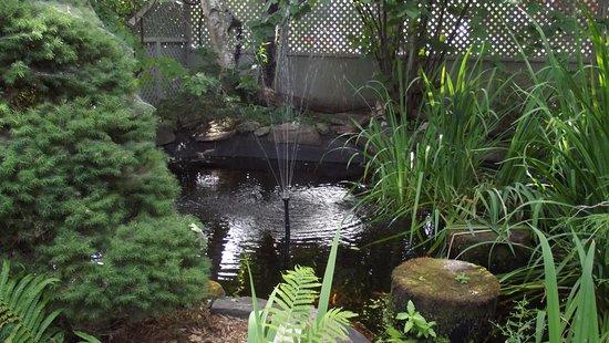 Trinity House Inn: jardin d'eau